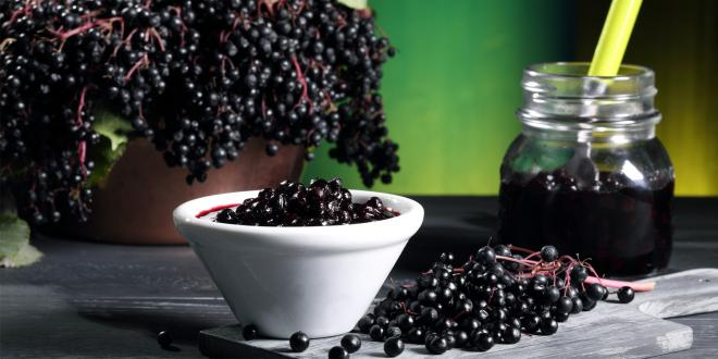 A bowl of black elderberries